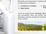 ¿Libres herbicida glifosato, usado pese estar catalogado cancerígeno?