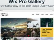 Para fotógrafos profesionales: Gallery está diseñado para negocio