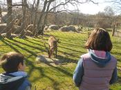 Visita Centro naturaleza Cañada Real