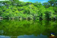 Lago Jalapa -Puerto Viejo de Sarapiquí, Heredia-