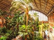 Jardín Atocha, gran primera impresión