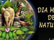 mundial naturaleza.-