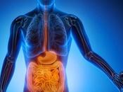 Parásitos intestinales: Cómo evitarlos