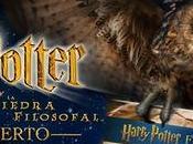 Harry Potter Concierto Barcelona
