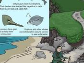 Found Fossils