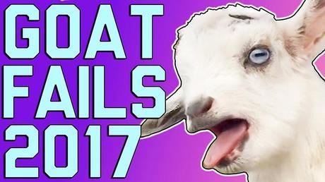 Goat Fails 2017