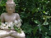 Baja auto estima budismo