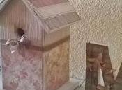 Caja casita pájaros