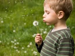 Combatir la alergia antes de que llegue la primavera