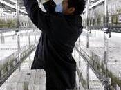 conquista papa: Conoce sobre futuro cultivo papa Marte