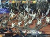 Golpe caza furtiva Junín Andes