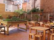 vecina, restaurante terraza perfecto para familias