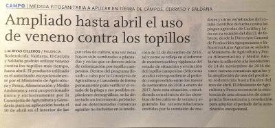 TIERRA DE CAMPOS: LUCES Y SOMBRAS