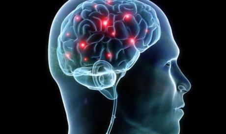 Simulador capaz de suministrar la información directamente en el cerebro