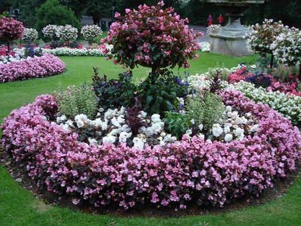 Colores en el jard n paperblog for Jardin 7 colores bernal