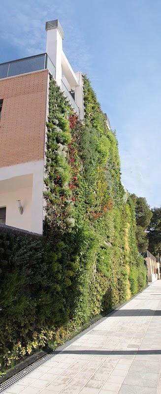 Jard n vertical en paterna paperblog for Jardines verticales valencia