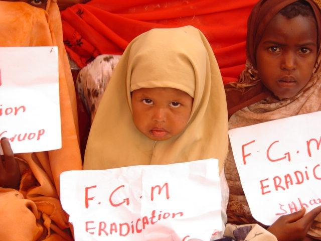 the historical background and impact of female genital circumcision in islamic cultures Home essays fgm human rights voilation fgm human rights voilation female genital cutting, and female circumcision it is practiced in.