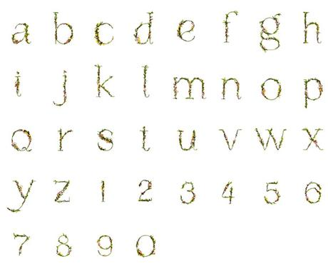 Blossom Type, natural flowers alphabet