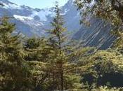 Área Conservación Privada, Santuario Verónica importancia