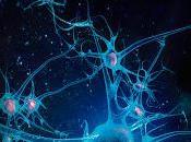 Inteligencia Artificial cómo robots influirán nuestra vida corto plazo #EbdM_InteligenciaArtificial