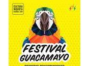 Festival Guacamayo 2017, confirmaciones