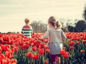 Consejos para fotografiar primavera. Parte