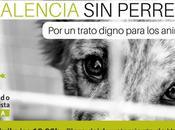 Manifestación Valencia. trato digno animales. Abril