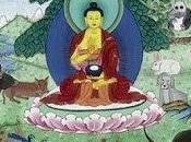 "ARGUMENTO: budismo dice nada sobre respetar animales"""