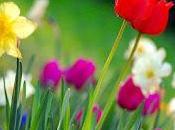 primavera está aquí. Hagamos ejercicio forma adecuada