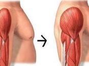 Ejercicios Comprobados Para Aumentar Masa Muscular Fracasar Intento