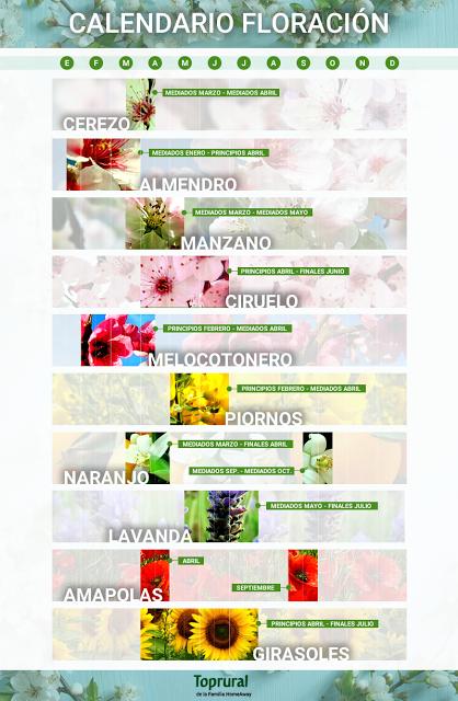 Guía de la Floración en España 2017
