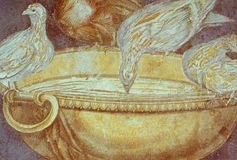 the pax romana essay Ax mongolia and pax romana - history format style english (us) essay history.