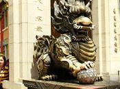 espalda dragón