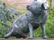 estatua perro operado vivo.