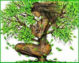 Resultado de imagen de árbol