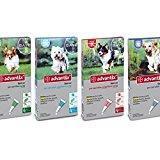 Advantix ® Spot On Perros hasta 4 kg - 4 pipetas de 0,4 ml - Antiparassita ...