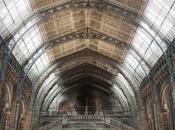 London (Natural History Museum):
