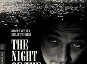 noche cazador: sitio
