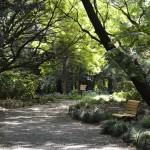 Jardín Nacional de Shinjuku Gyoen