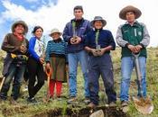 Sembrando futuro Chamaca: Plantan árboles como plan reforestación