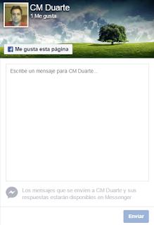 Opciones plugin pagina facebook 5