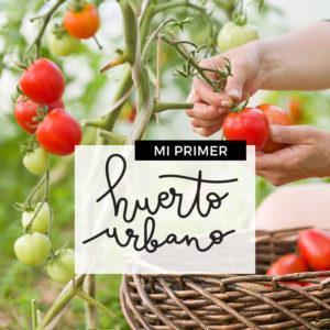 MI-PRIMER-HUERTO