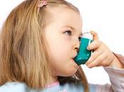 cucarachas roedores también provocan alergia asma
