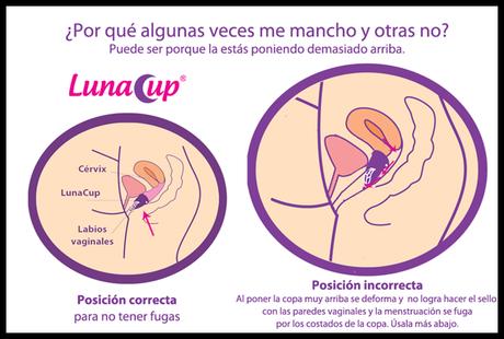 #Review# ~Copa Menstrual~ Tres años después