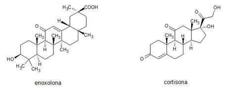 comparativa estructuras enoxolona y cortisona