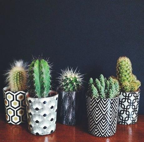 Deco: Obsesión por los mini cactus