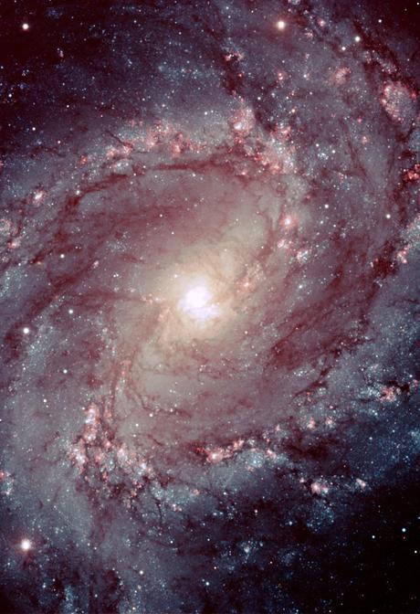 ✨La vigorosa vida de M83