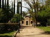 Badajoz verdiamarillo ensueño