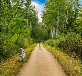 Great Trail, La mayor ruta verde del mundo