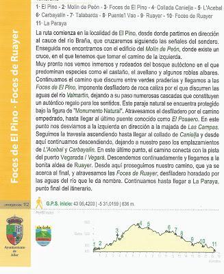 FOCES RIO PINO - FOCES RIO ALLER